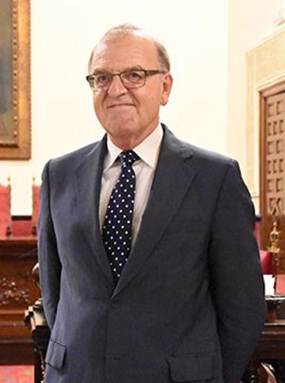 Iltre. Sr. D. Eusebio Pérez Torres